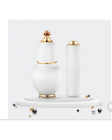 The History of Whoo Spot Brightening Ampule and Stick Special Set 明義享美白安瓶+明棒套裝